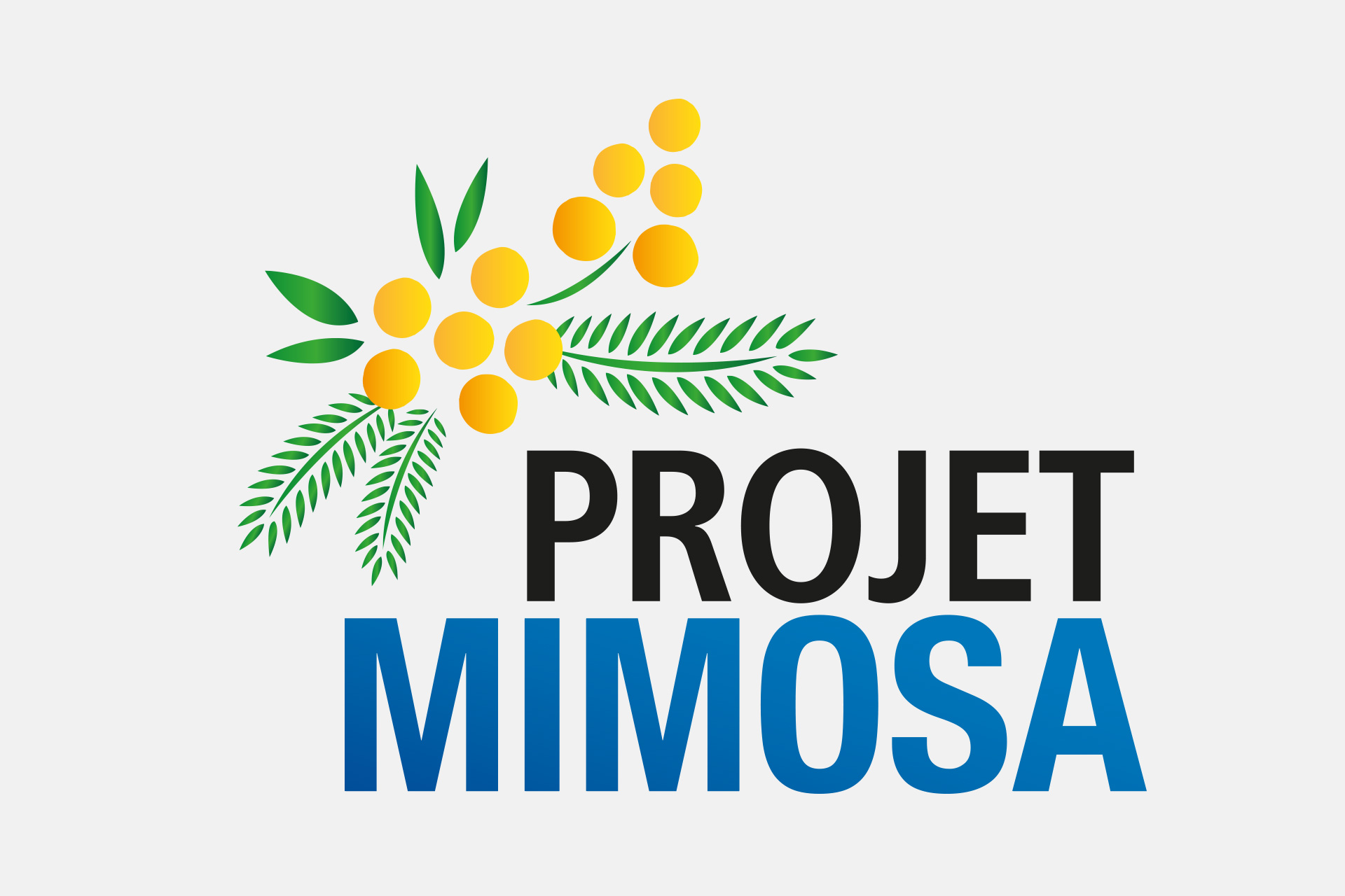 Projet MIMOSA
